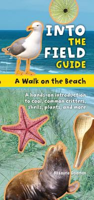 A Walk on the Beach By Warren, Emily Laber
